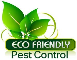 Working for Green Pest Control